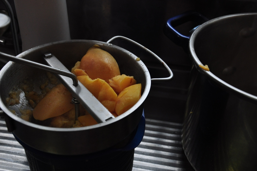 Quince paste and othermusings